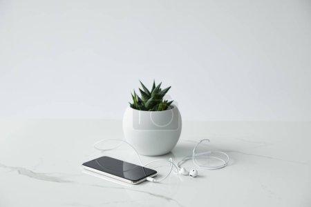 Photo pour Smartphone avec écran blanc, écouteurs câblés et pot de fleurs d'isolement sur le gris - image libre de droit
