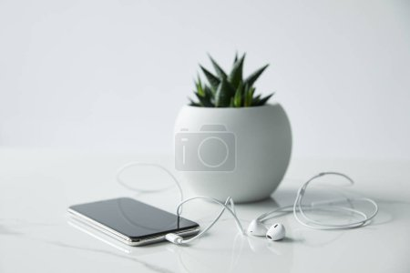 Photo for Selective focus of smartphone with earphones and flowerpot isolated on grey - Royalty Free Image