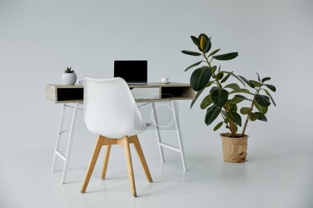 Photo for Table with laptop, white chair and plants in flowerpots on grey - Royalty Free Image