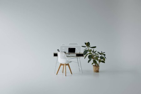 Photo for Table with laptop, white chair and green ficus in flowerpot on grey background - Royalty Free Image