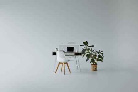 Photo pour Table avec ordinateur portable, chaise blanche et Ficus vert dans le pot de fleurs sur le fond gris - image libre de droit