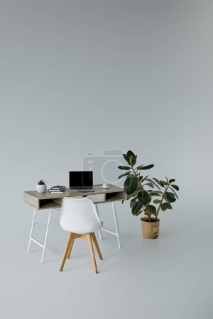 Photo for Ficus in flowerpot, table with notebook and white chair on grey background - Royalty Free Image