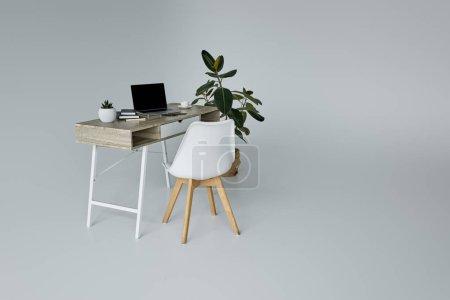 Photo pour Table avec ordinateur portable, pot de fleurs, livres, Ficus vert et chaise blanche sur fond gris - image libre de droit