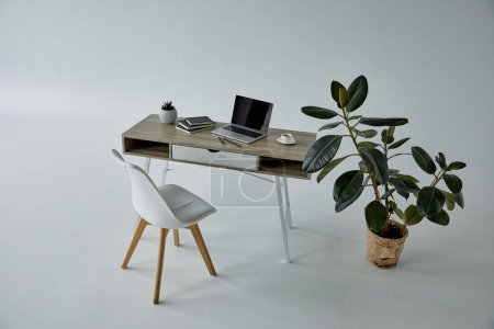 Photo for White chair, ficus in flowerpot, table with laptop and books on grey - Royalty Free Image