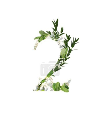Photo for Number 2 with white flowers and green leaves isolated on white - Royalty Free Image