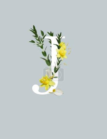 Photo pour Lettre blanche J avec jonquilles jaunes et feuilles vertes isolées sur le gris - image libre de droit