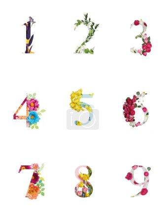 Foto de Números brillantes multicolores con plantas y flores aisladas en blanco - Imagen libre de derechos