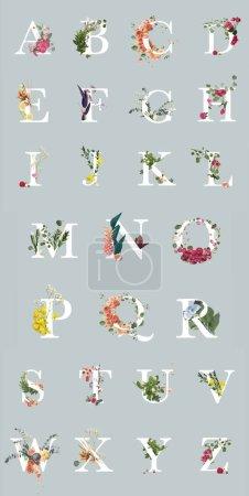 Photo pour Lettres lumineuses multicolores avec des plantes et des fleurs d'isolement sur le gris, alphabet anglais - image libre de droit