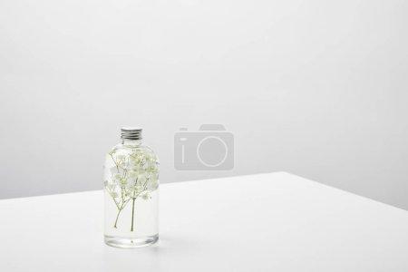 Photo pour Produit de beauté naturel avec les fleurs sauvages blanches dans la bouteille transparente sur le fond gris - image libre de droit