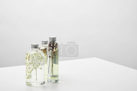 Photo pour Natural beauty products with wildflowers in transparent bottles on grey background - image libre de droit