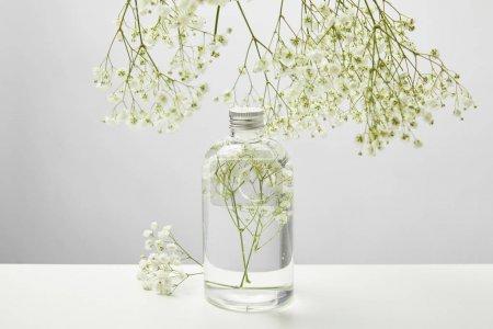 Photo pour Produit de beauté naturel dans la bouteille transparente et les fleurs sauvages blanches autour sur le fond gris - image libre de droit