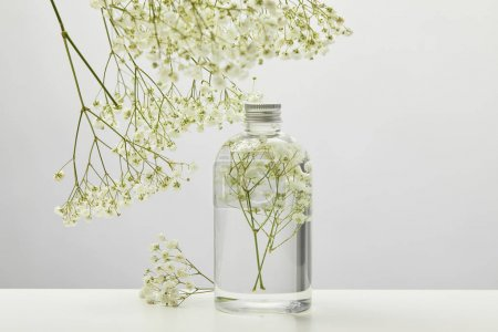 Photo for Natural beauty product in transparent bottle and white wildflowers on grey background - Royalty Free Image