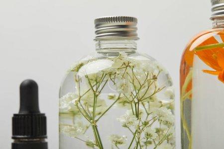 Photo pour Gros plan du produit de beauté organique dans la bouteille avec des fleurs sauvages à l'intérieur isolés sur le gris - image libre de droit