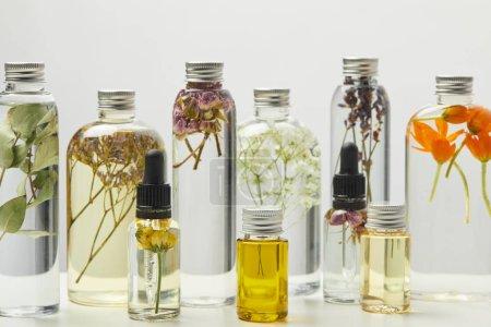 Photo pour Différents produits de beauté biologiques dans des bouteilles avec des herbes et des fleurs isolées sur le gris - image libre de droit