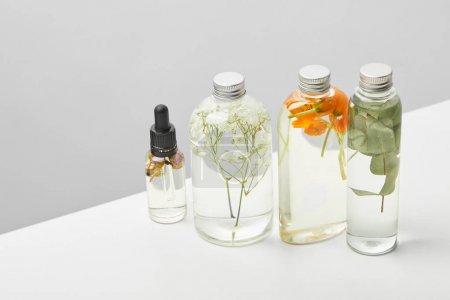 Photo pour Produits de beauté biologiques dans des bouteilles transparentes avec des herbes, des feuilles et des fleurs sauvages isolés sur le gris - image libre de droit