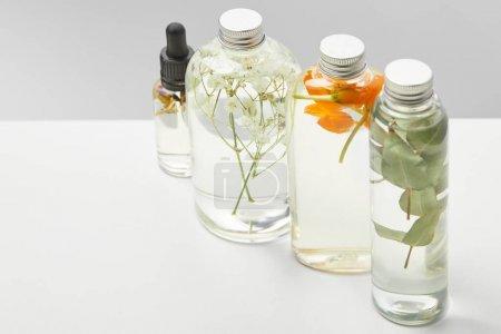 Photo pour Produits de beauté biologiques dans des bouteilles transparentes avec des herbes, des feuilles et des fleurs sauvages sur la table blanche d'isolement sur le gris - image libre de droit