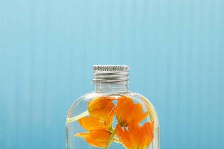 Photo pour Fermez-vous vers le haut du produit organique de beauté avec des fleurs oranges dans la bouteille sur le fond bleu avec l'espace de copie - image libre de droit