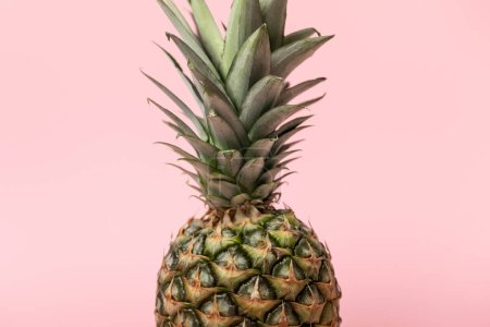 Photo for Sweet fresh tasty and raw pineapple with green leaves isolated on pink - Royalty Free Image