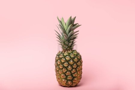 Photo for Fresh tasty and raw pineapple with green leaves on pink - Royalty Free Image