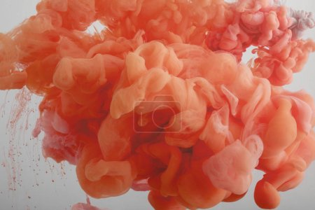 Photo for Close up view of coral paint swirls isolated on grey - Royalty Free Image