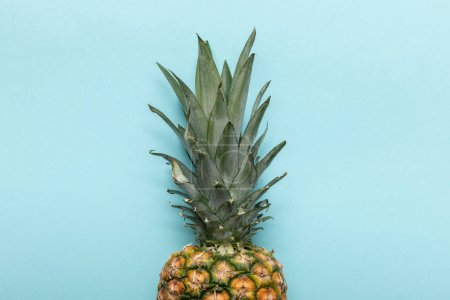 Photo for Top view of whole ripe tropical pineapple with green leaves on blue background with copy space - Royalty Free Image