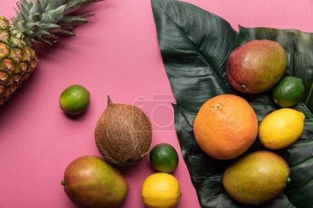 Foto de Vista superior de frutas tropicales brillantes maduras con hojas verdes sobre fondo rosado - Imagen libre de derechos