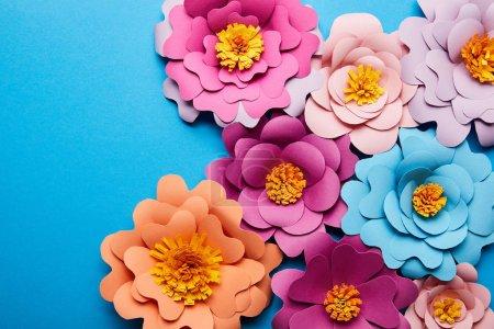 Foto de Vista superior de flores de papel colorido cortado sobre el fondo azul - Imagen libre de derechos