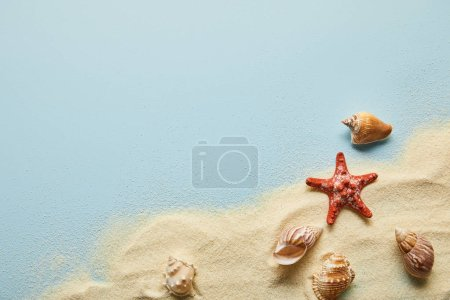 top view of textured wavy golden sand with seashells and starfish on blue background with copy space