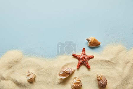 Photo for Top view of textured wavy sand with seashells and starfish on blue background with copy space - Royalty Free Image