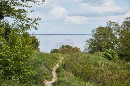 Photo pour Paysage paisible d'été avec des arbres verts, la rivière et le ciel bleu - image libre de droit