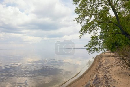 Photo for Peaceful landscape of blue sky and river with tree on sand beach - Royalty Free Image