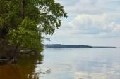 "Постер, картина, фотообои ""landscape with calm pond, green tree and sky with white clouds"""