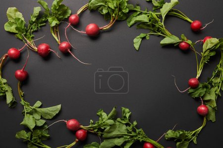 Photo for Top view of whole nutritious tasty radish with green leaves on black background with copy space - Royalty Free Image