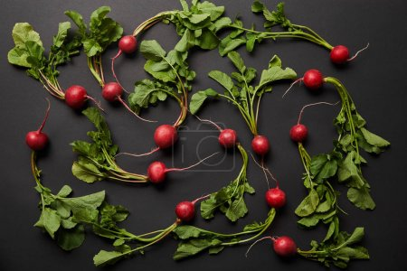 Photo for Top view of whole nutritious tasty radish with green leaves on black background - Royalty Free Image