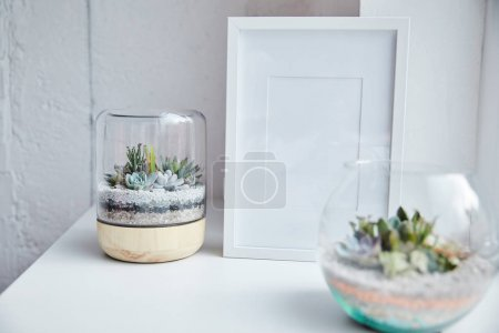 Photo for Selective focus of green succulents in flowerpots near empty photo frame on white surface, home decor - Royalty Free Image