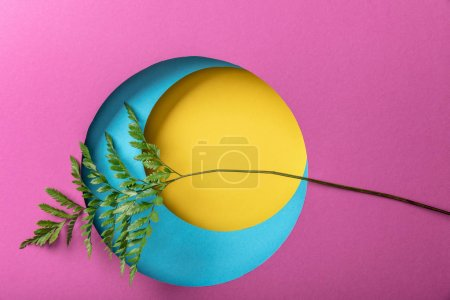 Photo for Green fern leaf on creative colorful paper background - Royalty Free Image