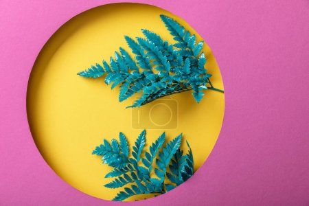 blue decorative fern leaves in yellow hole on pink paper