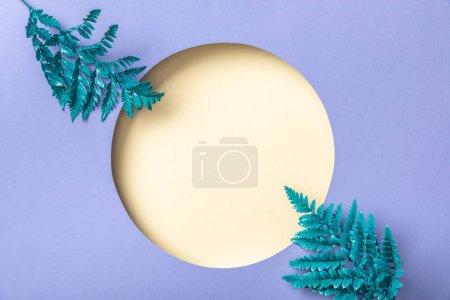 Photo pour Feuilles bleues de fougère près du trou beige sur le papier pourpre - image libre de droit