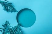 "Постер, картина, фотообои ""blue decorative fern leaves near round hole on blue paper """