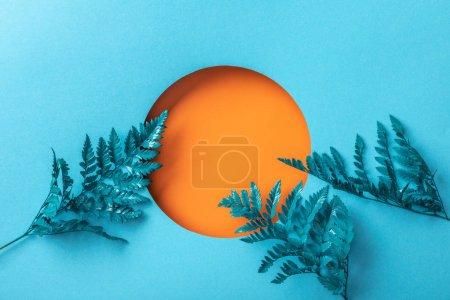 Photo pour Feuilles bleues de fougère près du trou orange sur le papier bleu - image libre de droit