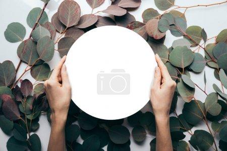 Photo pour Vue partielle de femme retenant le cadre rond vide sur le blanc avec des feuilles d'eucalyptus - image libre de droit
