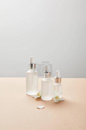 Photo pour Bouteilles en verre cosmétiques et quelques fleurs de jasmin sur beige isolé sur le gris - image libre de droit