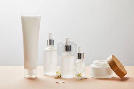 Photo pour Tube à crème, bouteilles en verre cosmétiques, pot ouvert avec de la crème et quelques fleurs de jasmin sur beige - image libre de droit