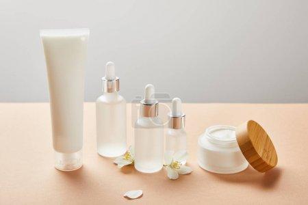 Photo pour Tube à crème, bouteilles en verre cosmétiques avec sérum et pot ouvert avec de la crème près de quelques fleurs de jasmin - image libre de droit