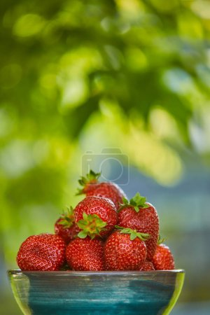 selective focus of organic red strawberries in bowl