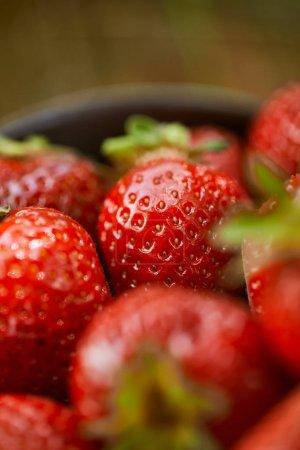enfoque selectivo de fresas dulces crudas en un tazón
