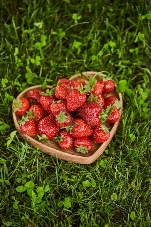 Photo for Fresh strawberries in wooden heart shaped plate on green grass - Royalty Free Image