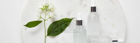 Photo for Panoramic shot of plate with jasmine and cosmetic glass bottles on white surface - Royalty Free Image
