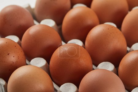 Photo for Selective focus of chicken eggs in carton box - Royalty Free Image