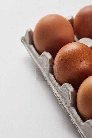 Photo pour Mise au point sélective des oeufs de poulet dans la boîte de carton - image libre de droit